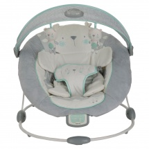 Bright Star Enlighten Bouncer